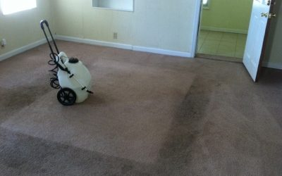 The importance of clean carpets